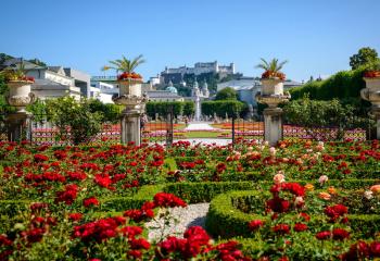 Mirabellgarten | garden