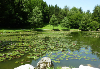Egelsee | pond